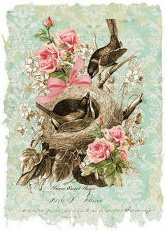 Birds in nest with roses