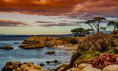 Montery-Pacific Grove Coast Photo by Janis Knight / Home Planet Images — National Geographic Your Shot