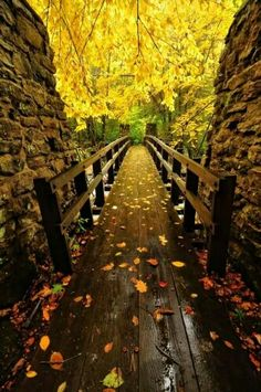 Glade Creek Swinging Bridge at Babcock State Park in West Virginia 10-11-2014 by Ed Rehbein Photography