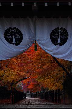 Koumyou - ji (temple), Kyoto, Japan. Photo by 92san. S)