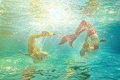 http://oceanikamerfins.com/welcome-to-oceanika