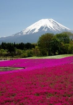Mount Fuji, Japan.I want to go see this place one day.Please check out my website thanks. www.photopix.co.nz