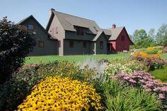 perennial meadow by Moore Design Builders