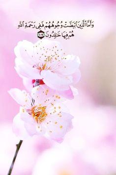 Quran Quotes Love, Islamic Love Quotes, Muslim Quotes, Duaa Islam, Islam Quran, Flower Background Wallpaper, Flower Backgrounds, Tafsir Coran, Quran Arabic