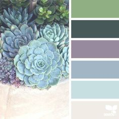 """1,982 Likes, 18 Comments - Jessica Colaluca, Design Seeds (@designseeds) on Instagram: """"today's inspiration image for { succulent hues } is by @flair4photo ... thank you, Kelly, for…"""""""