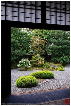 Beautiful garden. Releases all the tension                                                                                                                                                                                 More