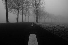 Avenue, Bend, Black-and-white, Cold, Curve, Fog