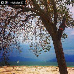 #Repost @micheles87 ・・・ Spiaggia Jamaica Sirmione  #sirmione #gardalake #gardasee #gardaconcierge #photogc #photogl…