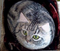 Paint a rock cat, step-by-step - detailed description and over 30 photos.