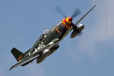 Old Crow: North American P-51 Mustang