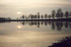 Rhein, Hochwasser in Zons - Foto: S. Hopp
