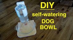 DIY ● Self Filling Water Bowl Dispenser for Your DOG  ( that works ! )