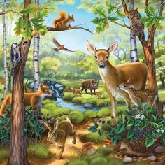 Forest animal puzzle illustration by anne wertheim directory. Canva Instagram, Animals And Pets, Cute Animals, Paradise Pictures, Animal Puzzle, Image Nature, Animal Habitats, Canvas Art, Canvas Prints