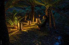"""Duncan Meerding a utilisé des troncs d'arbre """"craquelés"""" pour créer des lampes. Le résultat est magnifique !!"""