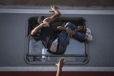 Fotos: World Press Photo 2016: El drama de los refugiados acapara las fotos del año   Cultura   EL PAÍS