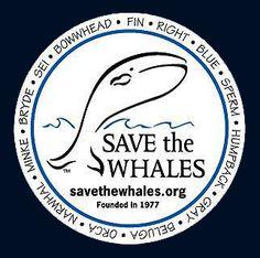 Save the Whales & all Marine Mammals