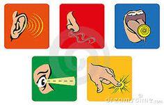 Resultado de imagen de el sentido del oido en infantil