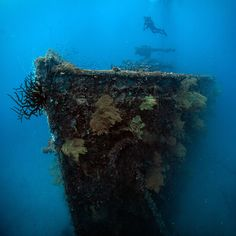 The San Francisco Maru in Truk Lagoon. 65m to the seabed. Photo #12 by © gh0stdot