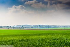 Green Fields forever by  ©Jacky COSTI Photography on 500px