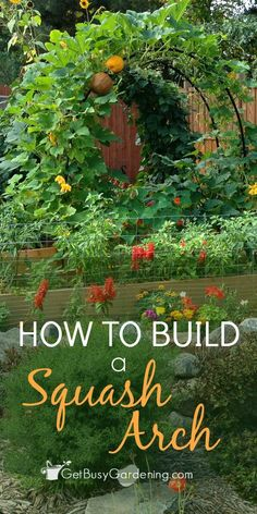 Build a squash arch to add beauty to your vegetable garden. This is an easy…