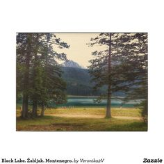Black Lake. Žabljak. Montenegro. Wood Print artwork, photo, photography, decor, design, montenegro, crno jezero, landscape, lake, black lake, scenery, nature, travel, žabljak, tourism, durmitor, mountain, freshness, coolness, day, sunny, forest, pine tree, pine, coniferous, tree, tranquility, blue, green, wall art