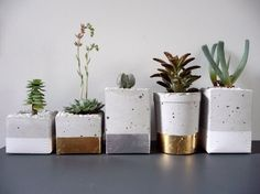 Pots made from cement ...minimal style