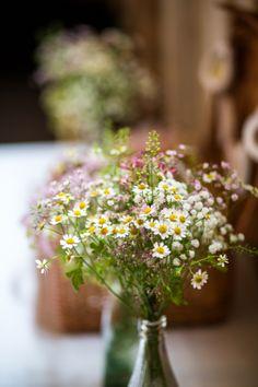 daisy wedding flowers bottle pretty country garden wedding http://www.dominicwhiten.co.uk