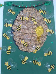 Kovanda arılar