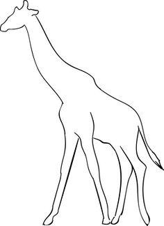 Żyrafa, Zwierzę, Sylwetka, Safari