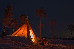 Dog Sledding Adventure & Northern Lights in Jokkmokk