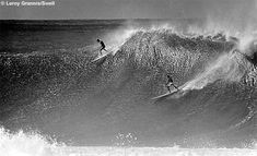 Eddie Aikau Biography and Photos | SURFLINE.COM