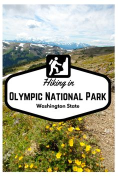 Hiking in Olympic National Park: A Misadventure - MissAdventure Travel