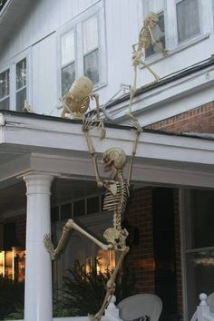 climbing skeletons