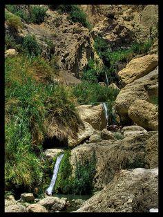 Ein Gedi Three Falls . Israel -I got to swim in this!