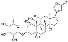 Strofantyna - lek nasercowy
