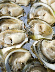 Korcula y Peljesac: ostras, vino y pastelillos