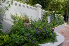 The brief was to create an entrance garden in an existing expansive driveway. AS one makes one way to the front door, one transitions through 3 distinct spaces: Oak Avenue, Garden Types, Contemporary Garden, Private Garden, Cape Town, Pathways, Water Features, Planting, Entrance