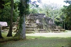 Visit Tikal - the most impressive city of the ancient Mayan world. Tikal, Cultural Experience, Family Travel, Lush, Wanderlust, Holidays, Adventure, City, World