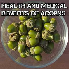 Health & Medical Benefits of Acorns.  Helps lower blood sugar.  Can also be made into flour or coffee. Tanic acid must be removed before using.  I was excited to know you can do this by drying in oven or sun, ( or by boiling or the traditional cold water flushing method).  https://nutrition1.knoji.com/the-health-and-medicinal-benefits-of-acorns/