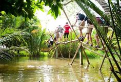Experience Monkey Bridge - a feature of Mekong Delta, Vietnam