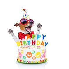 Happy Birthday Images & Photos. PlusQuotes                                                                                                                                                      More