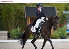 Responsive Website and Maintenance Web Portfolio, Crafty Fox, Dressage, Riding Helmets, Trainers, Horses, Website, Animals, Fashion