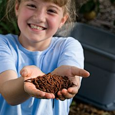 Start a Worm Farm...the kids do want a farm. Taytum is OBSESSED with worms right now. She would love it!
