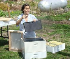 Beekeeper Zan Asha from New York, how to keep bees in the city, natural, no pesticides, environmental activist, Bronx Bees,