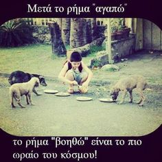Greek quotes Religion Quotes, Wisdom Quotes, Book Quotes, Me Quotes, My Best Friend, Best Friends, Cute Animal Photos, Greek Quotes, Life Is Beautiful
