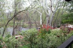 The view from my cabin's deck at L'Auberge de Sedona.