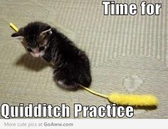 Time For Quidditch Practice Lolz :D