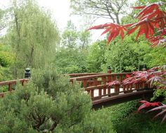 Anderson Japanese Gardens main bridge leading to the pond strolling garden