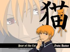 Kyo Sohma, Year of the Cat