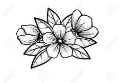 Résultat De Recherche Dimages Pour Dessin Fleur Noir Et